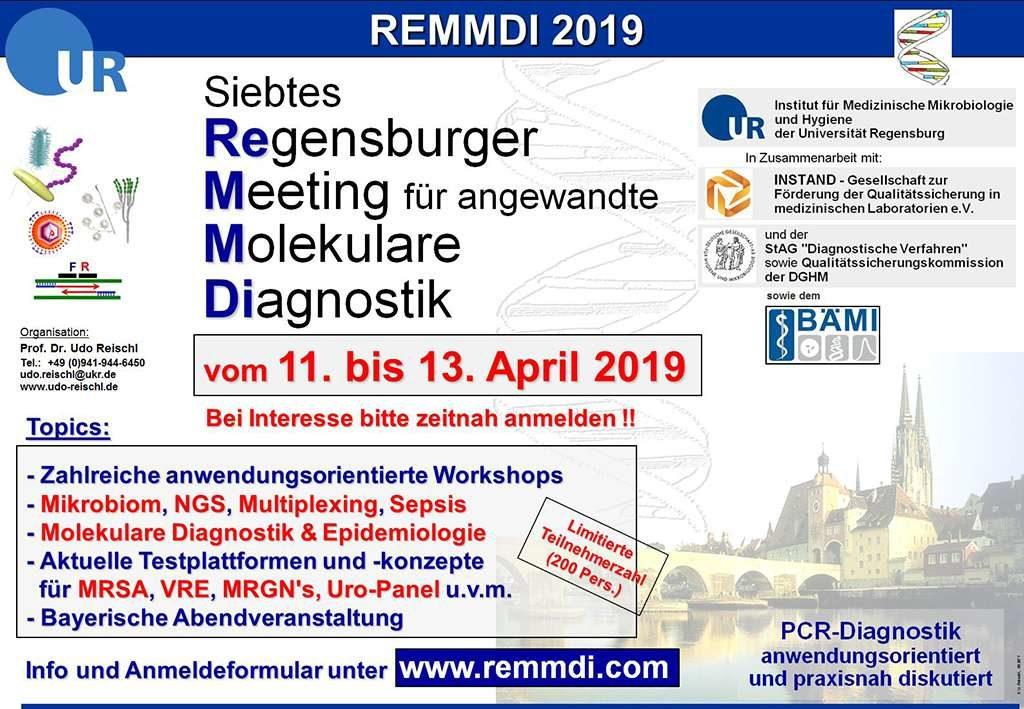 Remmdi 2019 Main 1024x709